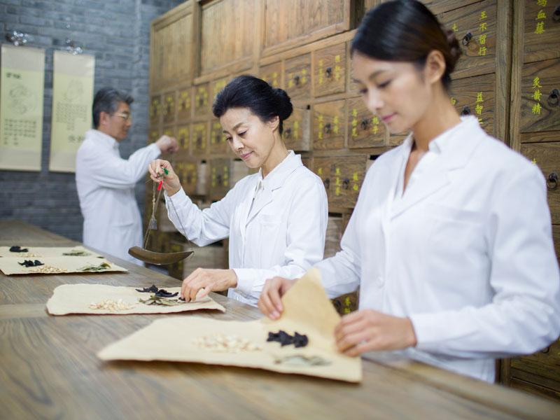 לימודי רפואה סינית מכללת מעינות